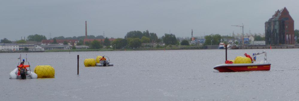 Warnowschwimmen in Rostock