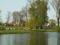 Frühjahrscrosslauf 2007 Rostock - Bild 111