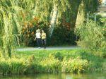 23. Herbst-Cross-Lauf um den  Schwanenteich Rostock - Bild 0049