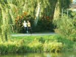 23. Herbst-Cross-Lauf um den  Schwanenteich Rostock - Bild 0050
