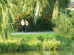 23. Herbst-Cross-Lauf um den  Schwanenteich Rostock - Bild 0051
