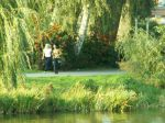 23. Herbst-Cross-Lauf um den  Schwanenteich Rostock - Bild 0052