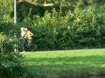 23. Herbst-Cross-Lauf um den  Schwanenteich Rostock - Bild 0054