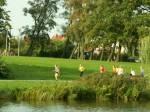 23. Herbst-Cross-Lauf um den  Schwanenteich Rostock - Bild 00658