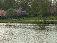 Frühjahrscrosslauf 2007 Rostock - Bild 363