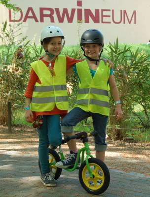 Fahrräder zu unterschiedlichen Anlässen in Rostock und Umgebung
