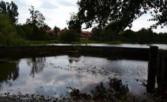 Schwanenteich in Rostock-Reutershagen unter Hochwasser nach Starkregen
