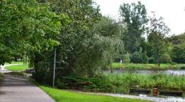 Schwanenteich in Rostock-Reutershagen nach Starkregen unter Hochwasser