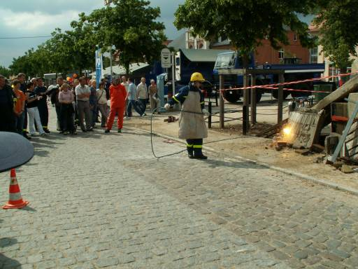 Bild 96 von MV - Tag in Ludwigslust