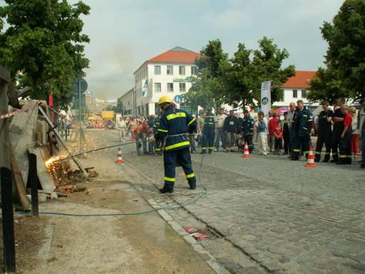Bild 97 von MV - Tag in Ludwigslust