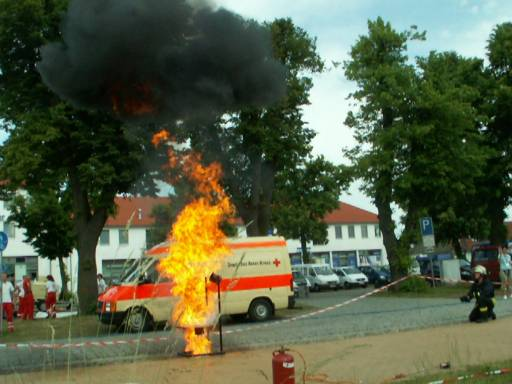 Bild 266 von MV - Tag in Ludwigslust