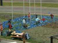 Foto 239 vom Weltkindertag in Rostock